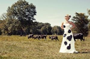 Bovine Fashion
